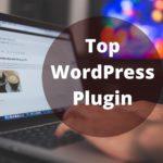 Top WordPress Plugin for Small Businesses